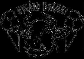 Nygaard logo